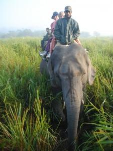 personnes a dos d'elephant_1